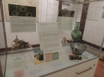 Highlights tour at Hurstville Museum & Gallery